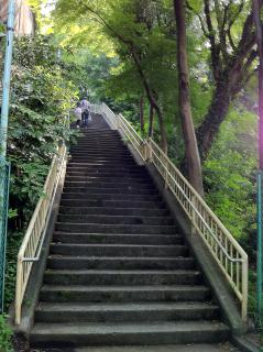 旧青山病院裏を上る現在の陸橋階段。1段約15cmの階段が66段あるから、台地の上と笄川の谷とでは、約10mの高低差がある。
