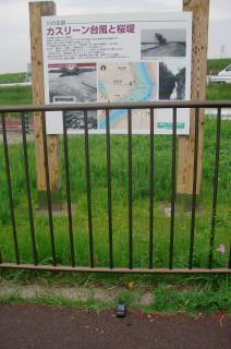 昭和22年、カスリーン台風時の決壊場所に立つ説明板。向こう側は江戸川の土手。説明板の下に縁量計