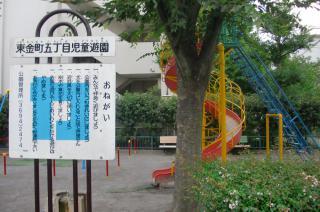 2011-07-28-059.JPG