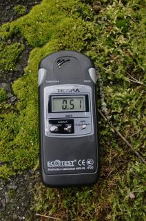 放射性物質は、苔が吸収する、というか苔によく溜る。写真はいずれも、2011年7月24日午後2時頃。