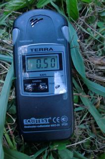 2011年8月4日午後、水元公園の刈草の上の数値